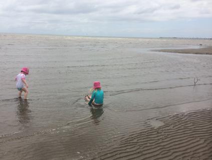 Sandgate mudflats - clean - Heidi Edmonds
